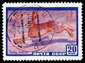 Vintage  Postage Stamp. Hare Hare.