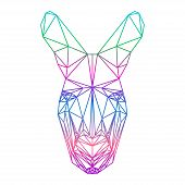 Polygonal Abstract Gradient Colored Kangaroo Silhouette Drawn In One Continuous Line