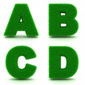 Letters A, B, C, D of 3d Green Grass - Set.