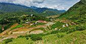 Panorama of rice field terraces (rice paddy). Near Cat Cat village, near Sapa, VIetnam