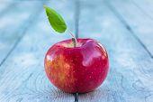 Single Cortland apple on a wooden background.