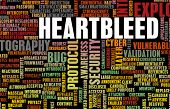 Heartbleed Technology Exploit Bug Alert as Concept