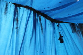 stock photo of tarp  - a picture of a stretched blue tarp - JPG