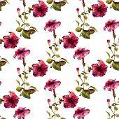 image of petunia  - Beautiful vector pattern with nice petunia flowers - JPG