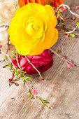 pic of buttercup  - Persian buttercup flowers  - JPG