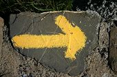 Yellow Arrow1