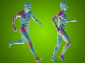 pic of male body anatomy  - Concept or conceptual 3D human man or male skeleton pain or ache anatomy transparent body - JPG