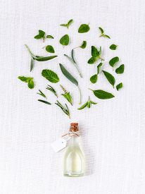 stock photo of mint leaf  - Bottle of essential oil with herb holy basil leaf rosemaryoregano sagebasil and mint on white background - JPG