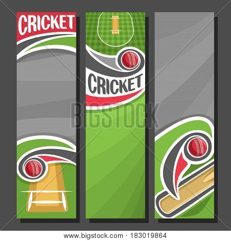 Vector Vertical Banners For Cricket 3 Cartoon Layouts Le Text On Theme Bat
