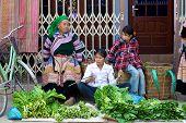 Flower Hmong People Vietnam