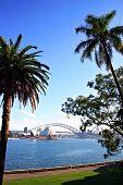 Sydney Skyline...