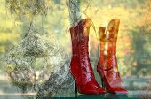 shopwindow with new red boots
