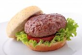 plain burger in a plate isolated