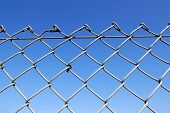 picture of chain link fence  - Chain link fence with blue sky background - JPG