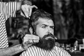 Barber Man Serving Client At Barber Shop. Vintage Barbershop, Shaving. Brutal Bearded Guy Viziting H poster