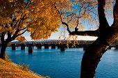 Autumn in Harrisburg.