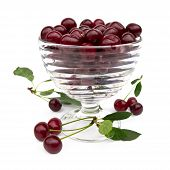 Cherry In A Glass Bowl