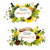 Natural Cooking Oils Of Sunflower, Olive Or Linseed Flax And Peanut And Maize Corn Oil. Vector Extra poster