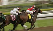 Horse Race Motion Blur