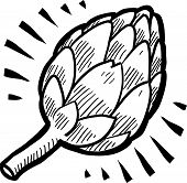 image of artichoke hearts  - Doodle style fresh artichoke illustration in vector format - JPG