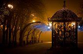 Urban park at night, romance, fog, lamps and light