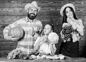 Parents And Daughter Celebrate Harvest Holiday Pumpkin Vegetables Fruits. Family Rustic Style Farmer poster