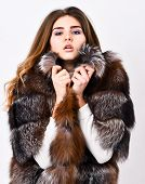 Pretty Fashionista. Fur Fashion Concept. Woman Makeup And Hairstyle Posing Mink Or Sable Fur Coat. W poster