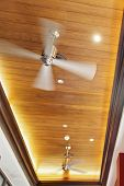 Paneled Ceiling Fans
