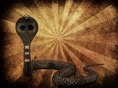 Cobra Snake On Grunge Background