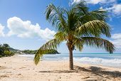 Friar's Bay On St Martin In Caribbean