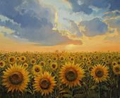 Sun Harmony