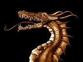 stock photo of fable  - Illustration of a golden dragon on a black background - JPG