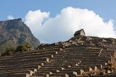 Guardhouse At Machu Picchu, Agricultural Terraces At The End Of The Dry Season