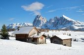 stock photo of south tyrol  - Wooden mountain chalets with a view on the Langkofel and Plattkofel  - JPG