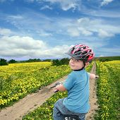 Child Cycling On A Spring Meadow
