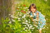 Menina encantadora entre flores silvestres amarelos