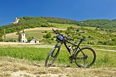 Mountain Bike In Green Landscape