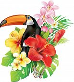stock photo of toucan  - Tropical flowers and toucan - JPG