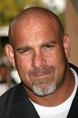 Bill Goldberg at the 2007 TCA Winter Press Tour. Ritz Carlton Huntington Hotel, Pasadena, CA. 01-11-