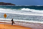 Decision time for a Sydney surfer