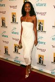Joy Bryant at the Hollywood Film Festival's 10th Annual Hollywood Awards Gala. Beverly Hilton Hotel,