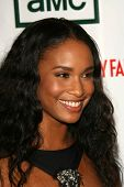 Joy Bryant at the 21st Annual American Cinematheque Award Honoring George Clooney. Beverly Hilton Ho