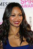 Zoe Saldana at the 2013 Film Independent Spirit Awards Nominations, W Hotel, Hollywood, CA 11-27-12