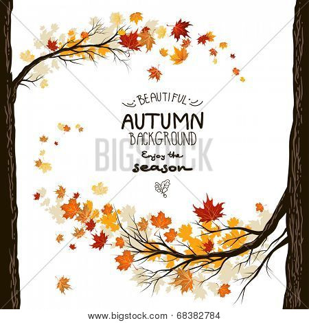 Fall background with leaves. Autumnal frame from trees poster