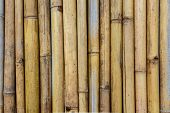 Close Up Of Bamboo Fence Background