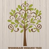 Wood grain organic tree