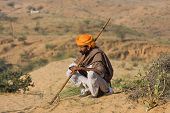 Pushkar Camel Mela ( Pushkar Camel Fair )