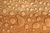 water drop on a wooden background