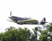 pic of spitfire  - Vintage spitfire in flight over green trees - JPG