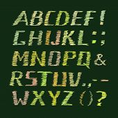Colorful Handwritten Chalk Alphabet on Green Background